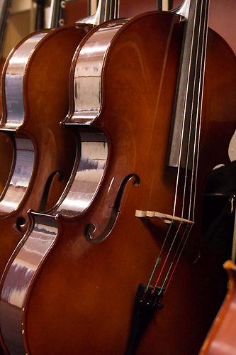 Cellos, Instrument, Instruments, Music, Musical, Instrumental, Cello, Music Lessons, Practice, Musical Practice,  Musical Rehearsal, Music Practice, Music Rehearsal, Rehearsal, Orchestra, Orchestra Practice, Orchestra Rehearsal, Rehearsals, Playing