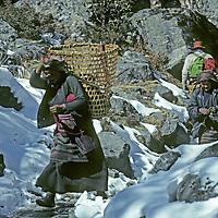 HIMALAYA, NEPAL. Sherpa women rush past trekkers en route to gathering firewood.