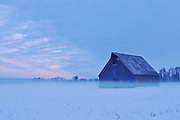 Olsen Barn, Evening Mist, Winter, Lake Almanor, Sierra Nevada Mountains, Mt. Dyer, North Fork, Feather River, California Barns, Late Sun, Cloudy Sunset, Fog, Forest, Shade Trees, Cascade Mountain Range, Lassen Peak