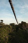 Canopy Walkway, 275m long, 36m high rigid walkway, at Sacha Lodge. Napo River bordering Yasuni National Park, Amazon Rainforest~Ecuador.