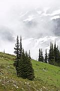 Alpine scenery on the side of Blackcomb Mountain, overlooking Whistler Mountain, near Whistler, British Columbia, Canada.