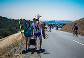 2013 Amgen California