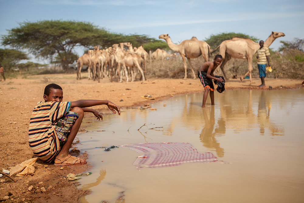 Nomads with camels at a watering hole near Dadaab refugee camp. Dadaab is the biggest refugee camp in the world, housing nearly 300,000 refugees, mainly from Somalia.