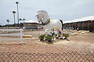 A horse statue near the garden exhibit.