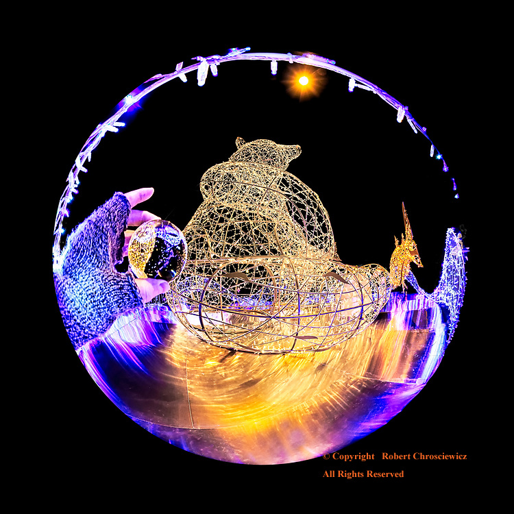 Davie  n' the Orb : Davie the grizzly bear sits framed by illuminated lights during Lumiere, Vancouver British Columbia Canada.