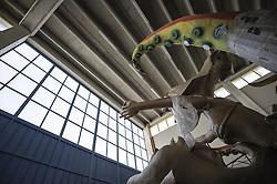 Carro allegorico in costruzione.<br /> Il carnevale di Gallipoli è tra i più noti della Puglia. La sua tradizione è antichissima ed è documentata, oltre che in atti e documenti settecenteschi, anche da radici folcloristiche che affondano le origini in epoca medioevale, tramandate fino ad oggi dallo spirito popolare. La prima edizione (per come la conosciamo) risale al 1941; nel 2014 sarà l'edizione numero 73.<br /> La manifestazione carnascialesca è organizzata dall' Associazione Fabbrica del Carnevale, nata nel febbraio 2013 con la finalità diorganizzare, promuovere e riportare in auge il Carnevale della Cittàdi Gallipoli. L'Associazione raccoglie al suo interno i maestri cartapestai Gallipolini e tanti giovani artisti, che vogliono valorizzare il Carnevale della città bella. Presidente dell'Associazione è Stefano Coppola.<br /> La manifestazione ha inizio il 17 gennaio, giorno di sant'Antonio Abate (te lu focu = del fuoco), con la Grande Festa del Fuoco, quando si accende con la tradizionale focara, un grande falò di rami d'ulivo. L'ultima domenica di carnevale e il martedì grasso lungo corso Roma, nel centro cittadino, si svolge la sfilata dei carri allegorici in cartapesta e dei gruppi mascherati corso Roma davanti a migliaia di spettatori provenienti da tutta la provincia di Lecce e da città pugliesi. Il tema dell'edizione di quest'anno è un omaggio a Walter Elias Disney.<br /> <br /> Float under construction.<br /> The Carnival of Gallipoli is among the best known of Puglia. Its tradition is very old and is documented , as well as records and documents in the eighteenth century , as well as folkloric roots that sink their roots in medieval times , handed down today by the popular spirit . The first edition dates back to 1941 and in 2014 will be the edition number 73 .<br /> The carnival is organized by the Association of Carnival Factory , founded in February 2013 with the objective to organize, promote and revive the Carnival of the city of Gallipoli. The Ass