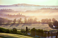 The Tuscany hilly landscape at sunset around Siena, Italy.