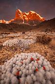 PERU IMAGE GALLERY