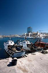 Paranze ormeggiate nel porto di Gallipoli (LE). Sullo sfondo il caratteristico edificio a forma di lama.