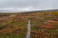 Single track trail though autumn mountain landscape along Kungsleden Trail, Lapland, Sweden
