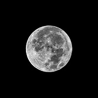 Full Moon. Autumn Nature in New Jersey. Image taken with a Nikon D800  camera and 500 mm f/4 VR lens + TC-E 20 teleconverter (ISO 100, 1000 mm, f/8, 1/250 sec).