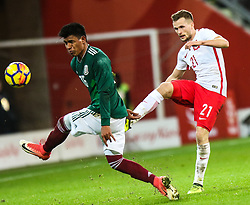 November 13, 2017 - Gdansk, Poland - Jesus Gallardo (MEX), Tomasz Kedziora (POL) during the International Friendly match between Poland and Mexico at Energa Stadium in Gdansk, Poland on November 13, 2017. (Credit Image: © Foto Olimpik/NurPhoto via ZUMA Press)