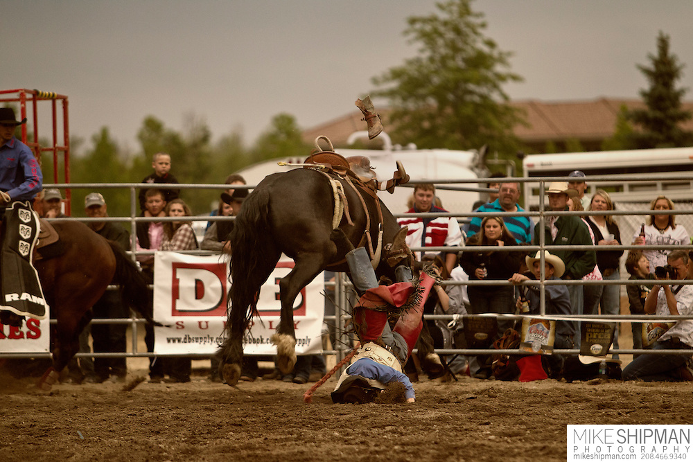 A cowboy loses his boot as he bites the dirt after being bucked off a saddle bronc, Eagle Rodeo, Eagle, Idaho, USA