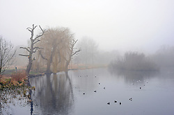 © Licensed to London News Pictures. 12/03/2016<br /> A pond covered in heavy fog in Foots Cray Meadows  in  Sidcup, Kent this morning. Photo credit: Grant Falvey