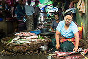 14 JUNE 2013 -  PANTANAW, AYEYARWADY, MYANMAR: A woman sells fish in the market in Pantanaw, in the Ayeyarwady Region of south-west Myanmar. It is the hometown of former United Nations Secretary-General U Thant and of the renowned artist U Ba Nyan.   PHOTO BY JACK KURTZ