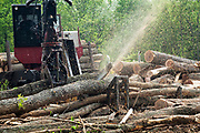 Logger with cutter