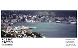 A panoramic view of Wellington City and the harbour, from the summit of Mt Victoria.