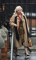 © London News Pictures. 22/11/2011. London, UK.  Former business adviser of supermodel Elle Macpherson, MARY-ELLEN FIELD arriving at The Royal Courts of Justice today (22/11/2011) to give evidence at the Leveson Inquiry into press standards. The inquiry is being lead by Lord Justice Leveson and is looking into the culture, and practice of the UK press. The Leveson inquiry, which may take a year or more to complete, comes after The News of The World Newspaper was closed following a phone hacking scandal. Photo credit : Ben Cawthra/LNP