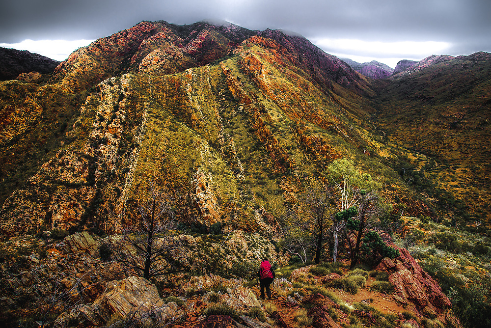 Going down to Fringe Lily Creek from Razorback Ridge at West Macdonnell Ranges, Northern Territory