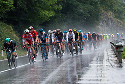 Peloton during 4th Stage of 26th Tour of Slovenia 2019 cycling race between Nova Gorica and Ajdovscina (153,9 km), on June 22, 2019 in Slovenia. Photo by Matic Klansek Velej / Sportida