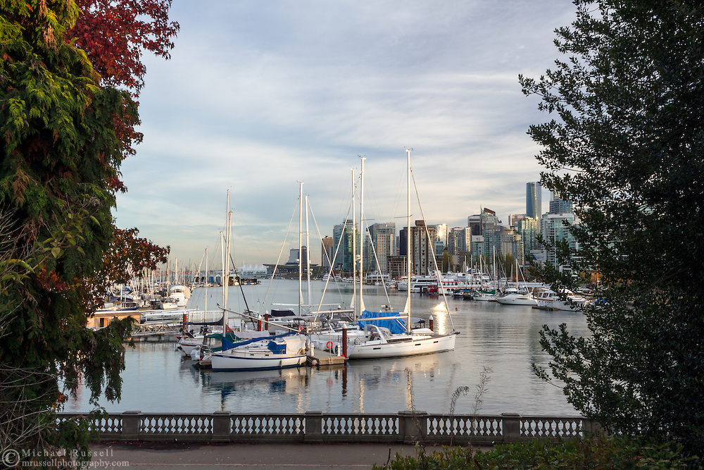 Sailboats moored at the Royal Vancouver Yacht Club and Vancouver Rowing Club.  Photographed from the Stanley Park seawall along the western end of Coal Harbour in Vancouver, British Columbia, Canada