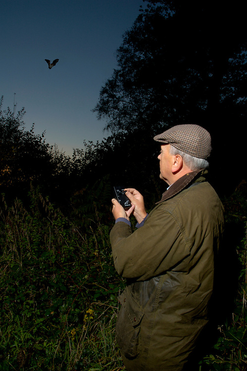 Professional ecologist using bat detector to survey bat numbers and species