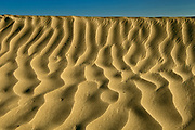 Ripples in sand dunes, Great Sand Hills, Saskatchewan, Canada