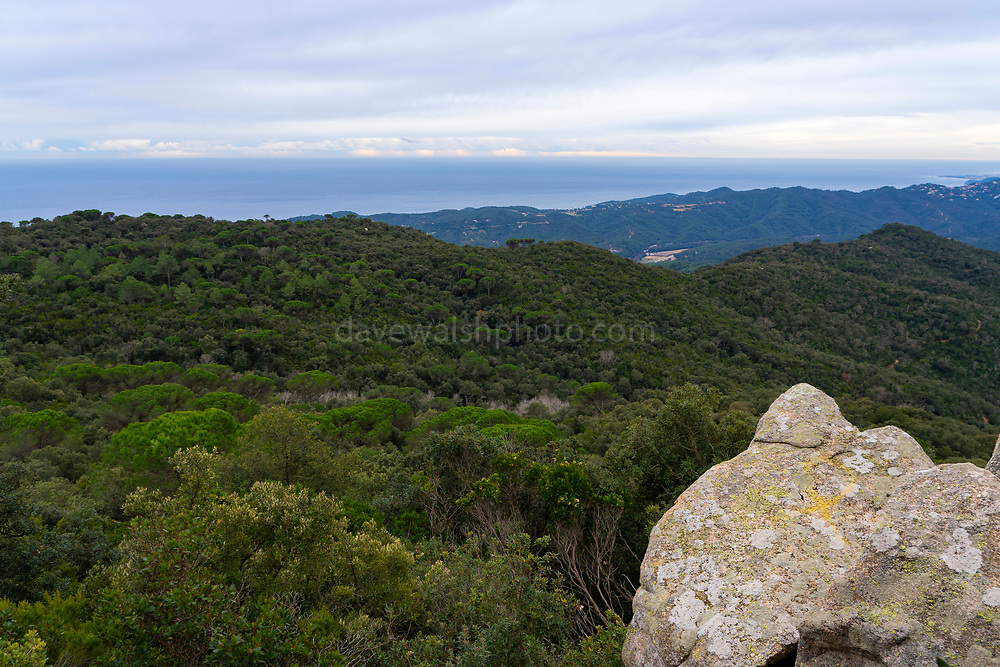 View from the Puig de Cadiretes