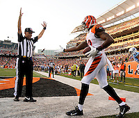 A Cincinnati Bengals receiver tries to get a hand shake from the official after scoring a touch down against the Tennessee Titans  in Cincinnati, Ohio on August 17, 2013. Photos by Donn Jones Photography.