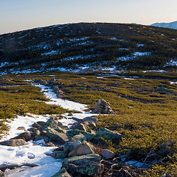 The Appalachian Trail on Mt. Guyot in New Hampshire's White Mountains.  The Twinway.  Mt. Washiington is in the distance.  Early spring.  Sunrise.