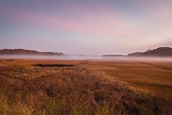 fog rolling in on a field in East Hampton, NY