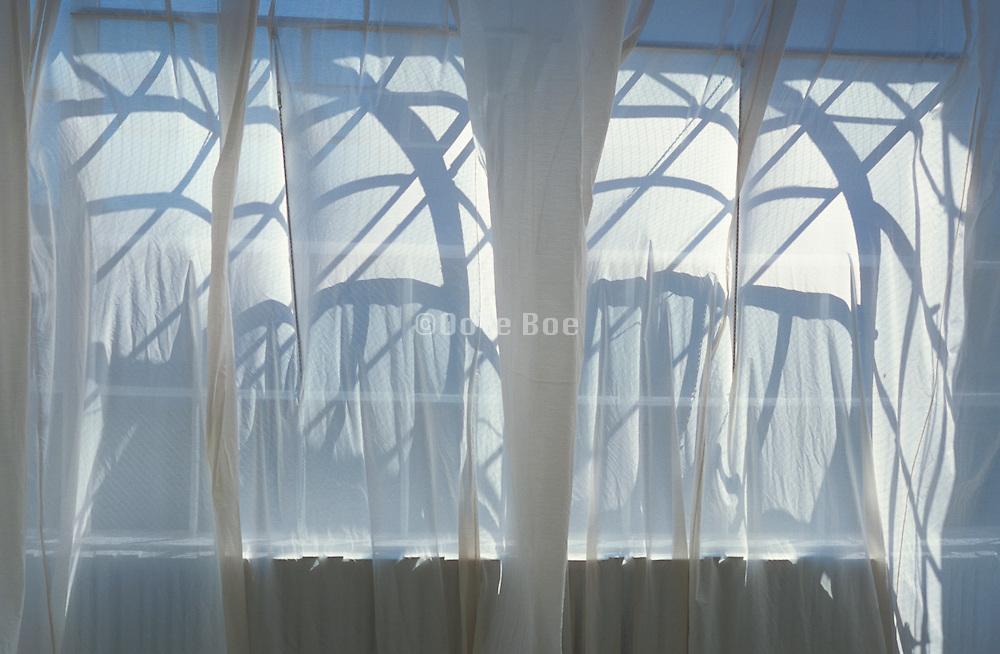 Arching shadows through a white curtain