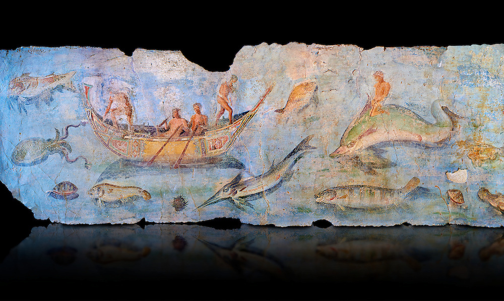 Roman Fresco with boats and marine life from the second quarter of the first century AD. (mosaico fauna marina da porto fluviale di san paolo), museo nazionale romano ( National Roman Museum), Rome, Italy. inv. 121462 .  Against a black background.<br /> The frescoes depict boats decorated as boats which went along the Tiber on festival days; their shape appears to be the caudicariae boats, used to transport merchandise. In the fresco fragment exhibited here (Ambiente E) the boat on the left depicts probably the group of 'side Serapide and Demetra on the stern, whereas the one on the right presents a crowned character on the bow and, on the stern, a feminine figure fluctuating in the air. Between the two boats, a young boy (a cupid or Palaimon-Portunus) rides a dolphin. All around are depicted several fish incredibly casting their shadows on the sea. The ichthyic fauna, lifeless as in still life decoration, is detailed as in a scientific catalogue. For the most part the represented species live next to the coast or were bred by the Romans in the piscinae salsac or in ponds. It is possible to recognize the rock mullet (mullus sunnuletus) and the mud one (mullus barbatu4 the scorpion fish (scorpoena) the dentex (dentex dentex), the aguglia (belone agus) the dolphin (delphinus delphis) and the golden mullet (lire curate). .<br /> <br /> If you prefer to buy from our ALAMY PHOTO LIBRARY  Collection visit : https://www.alamy.com/portfolio/paul-williams-funkystock/national-roman-museum-rome-fresco.html<br /> <br /> Visit our ROMAN ART & HISTORIC SITES PHOTO COLLECTIONS for more photos to download or buy as wall art prints https://funkystock.photoshelter.com/gallery-collection/The-Romans-Art-Artefacts-Antiquities-Historic-Sites-Pictures-Images/C0000r2uLJJo9_s0