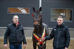 006, Pegase van't Ruytershof<br /> BWP hengstenkeuring - Meerdonk 2018<br /> © Hippo Foto - Dirk Caremans<br /> 17/03/2018006, Pegase van't Ruytershof, De Winter Eric, Van den Branden Bert, Bauters Jozef, BEL<br /> BWP hengstenkeuring - Meerdonk 2018<br /> © Hippo Foto - Dirk Caremans<br /> 17/03/2018006, Pegase van't Ruytershof, De Winter Eric, Van den Branden Bert, BEL<br /> BWP hengstenkeuring - Meerdonk 2018<br /> © Hippo Foto - Dirk Caremans<br /> 17/03/2018