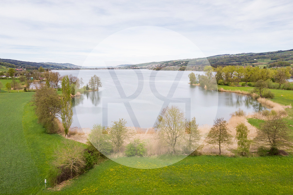 SCHWEIZ - BALDEGG - Naturschutzgebiet am Baldeggersee - 25. April 2019 © Raphael Hünerfauth - https://www.huenerfauth.ch