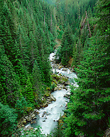 Nooksack River, Mt. Baker National Forest, WA