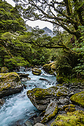 Crucible Stream below Mt Alba in Mount Aspiring National Park, in the Southern Alps. Makarora, Otago region, South Island of New Zealand. UNESCO lists Mount Aspiring as part of Wahipounamu - South West New Zealand World Heritage Area.