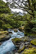 Crucible Stream below Mt Alba in Mount Aspiring National Park, in the Southern Alps. Makarora, Otago region, South Island of New Zealand. UNESCO lists Mount Aspiring as part of Wahipounamu - South West New Zealand World Heritage Area.