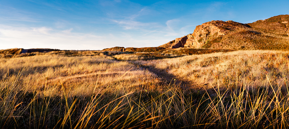 Golden light shining across the sand dunes and walking paths at sunset near St Ouen's Bay, Jersey CI in Autumn