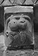The Stone Bestiary - Black and white photo art print of Norman Romanesque exterior corbel no 36 - sculpture of two fledgling birds both biting a serpent. Possibly an allegory of the original sin man is born with due to Adam taking the apple from a serpent in the garden of Eden.  The Norman Romanesque Church of St Mary and St David, Kilpeck Herefordshire, England. Built around 1140 .<br /> <br /> Visit our LANDSCAPE PHOTO ART PRINT COLLECTIONS for more wall art photos to browse https://funkystock.photoshelter.com/gallery-collection/Places-Landscape-Photo-art-Prints-by-Photographer-Paul-Williams/C00001WetsxVxNTo .<br /> <br /> By Photographer Paul E Williams
