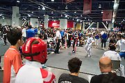 LAS VEGAS, NV - JULY 9:  Athletes compete in the WAKO tournament during the UFC Fan Expo at the Las Vegas Convention Center on July 9, 2016 in Las Vegas, Nevada. (Photo by Cooper Neill/Zuffa LLC/Zuffa LLC via Getty Images) *** Local Caption ***