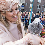 NLD/Hoogeveen/20190918 - Koningspaar brengt bezoek Zuid-west Drenthe, Maxima met een Grijze roodstaart papegaai op haar handen van een toeschouwer
