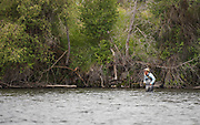 Marc Crapo fishing the Green Drake hatch on the Fork