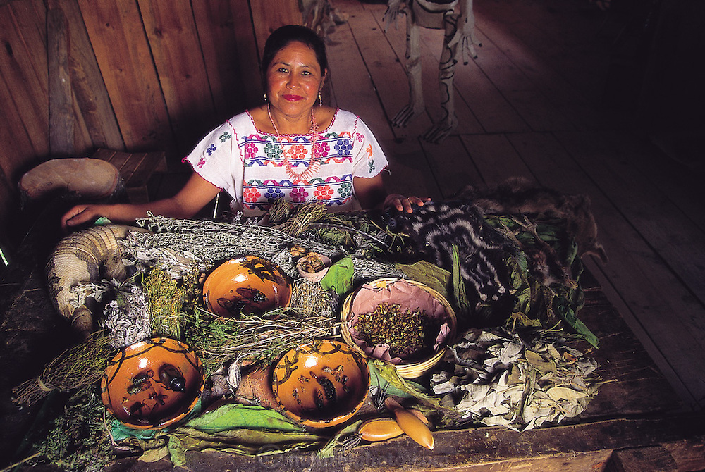 "Cresenciana Rodríguez Nieves, a 43-year-old doctor, displaying a spread of what she refers to as ""Méxica"" medicine, or various native plants, animals and insects used for medicinal purposes. She does not like the term ""traditional"" medicine for its certain pejorative connotations, but rather points to the heritage of her trade, which extends to a time before Europeans invaded her land. Puebla, Mexico. (Man Eating Bugs page 120)"