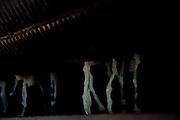 Patos de Minas_MG, Brasil...Cacharia em Patos de Minas que fabrica aguardente para exportacao. Na foto moinho moendo cana de acucar...Cachacaria in Patos de Minas, which manufactures cachaca for export. In the picture mill grinding sugar cane...Foto: LEO DRUMOND / NITRO.