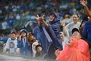 Fans go watch a could ball as the rain falls during the Chicago Cubs Colorado Rockies game at Wrigley Field on August 26, 2012 in Chicago, Illinois. The Cubs defeated the Rockies 5-0 in a rain-shortened eight inning game.  (Getty Images)