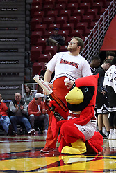 07 January 2018:  Reggie Redbird shoots with tshirt ammo during a College mens basketball game between the Missouri State Bears and Illinois State Redbirds in Redbird Arena, Normal IL