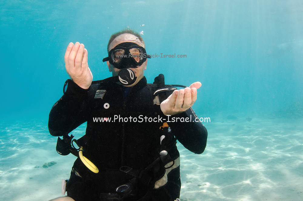 Adjust your buoyancy or pay attention to your buoyancy. Underwater Hand signs scuba diver demonstrates the sign language for divers.