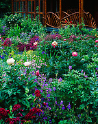Beautiful array of summer flowers blooming at Coyote Gardens, a private garden planted by Les Brake in Willow, Alaska.