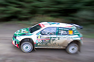 Paolo Nobri(BRA)and Co/Driver Gabriel Morales(BRA)Skoda Fabia R5 during the Wales Rally GB at the Snowdonia National Park on 4 October 2019.Stage SS3 Penmachno